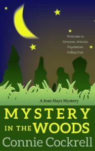 mystery-in-the-woods-cover2
